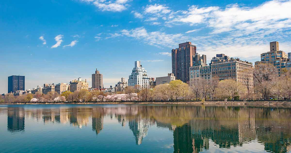what-are-new-yorks-nursing-ce-requirements